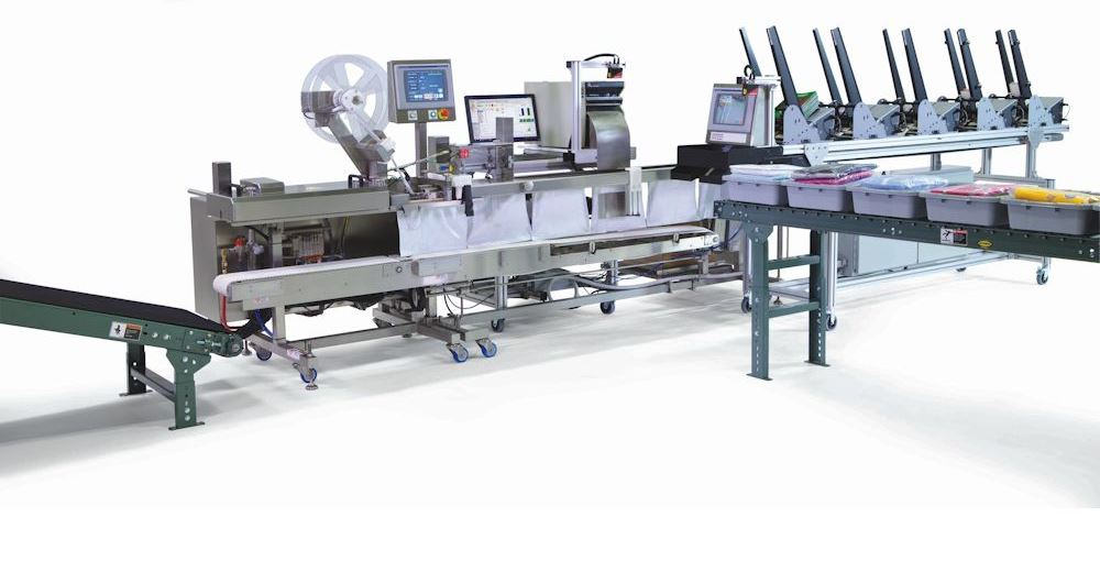 Autofulfillment SPrint bagger with tote conveyor plain bags